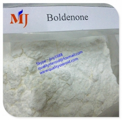 Boldenone base /Dehydrotestosterone